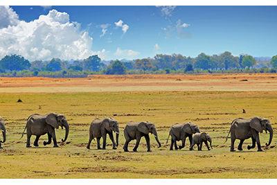 unesco cultural heritage zambia walking safari