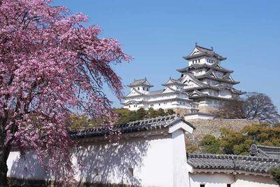 himeji japan white heron castle