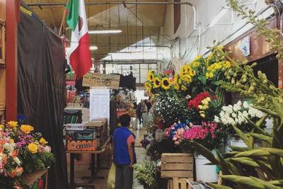 roma market mexico city