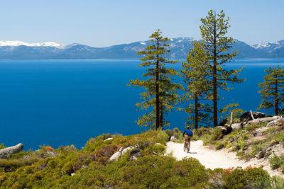 lake tahoe mountain biking california