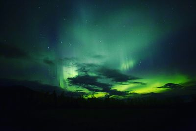 The Northern Lights Canada