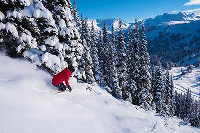 Steep Skiing Whistler