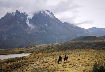 Horses, Patagonia
