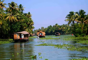 Houseboats on the backwaters