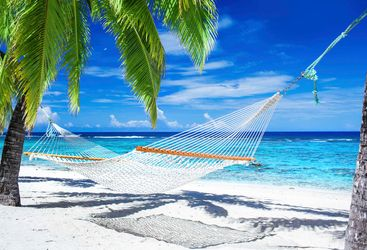 A Hammock On A Maldivian Beach