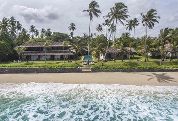 Frangipani Tree view from the sea