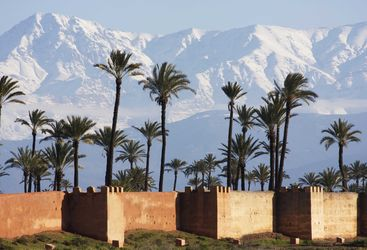 Atlas Mountains palmtrees