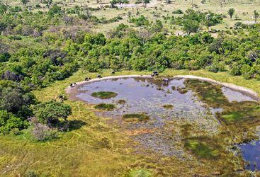Okavango Delta view