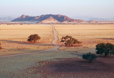 Namib desert road