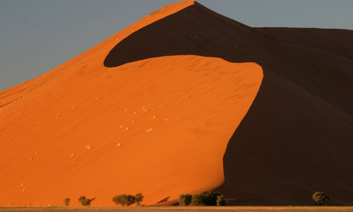 Sand dunes in the Namib desert