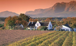 The Winelands, South Afria