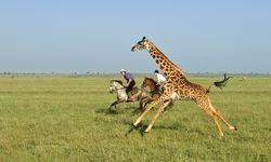 Botswana Riding Safari, Botsawana