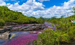 Cano Cristales river