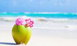 Fresh coconut cocktail Barbados