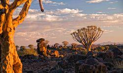 View over Kalahari
