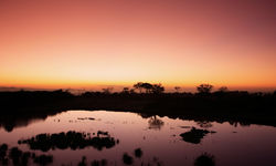 Sunset in Samburu