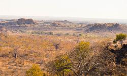 mapungubwe national park landscape