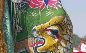 Painted elephant