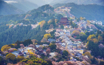 Rooftop view of Yoshinoyama