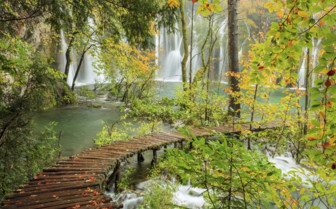Woodland and waterfalls in Croatia