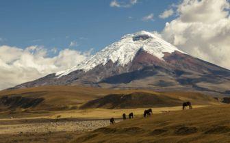 Andes Mountains, Ecuador