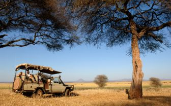 Safari in Ruaha National Park, Tanzania