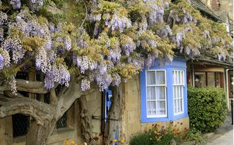 An image of a Cotswold cottage