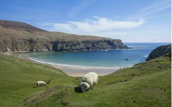 A hilltop view of Donegal Beach