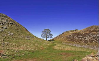 A view from Hadrian's wall, otherwise known as the Roman Wall