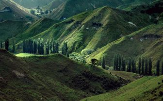 Valley in New Zealand
