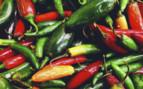 Mexico Chillies