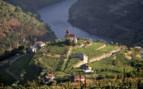 Douro Valley Hillside
