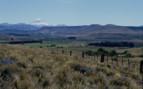 Sprawling fields under Mountain