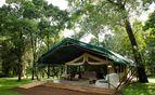 Il Moran tents exterior