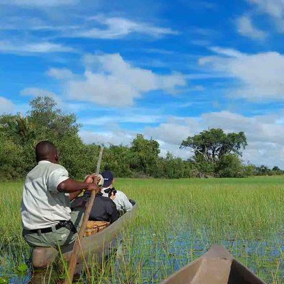 Mokoro canoe safari