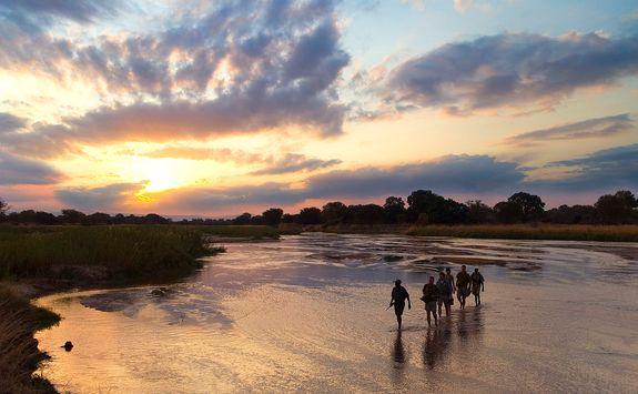 Walking safari at dusk