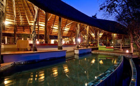 Lion Camp pool