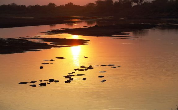 Sunset over South Luangwa