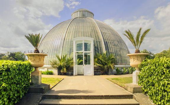 Green house at Kew