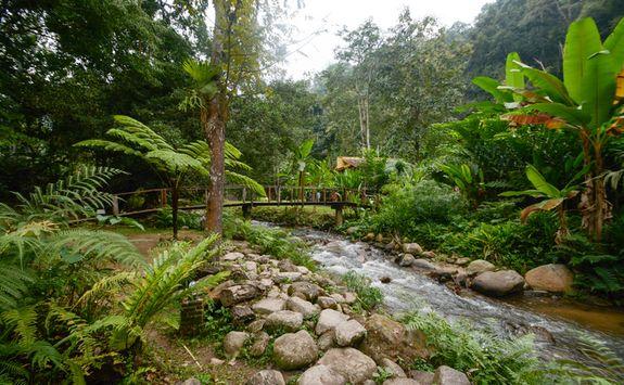 Mae Kampong waterfalls