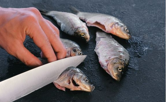 man makes cuts on carp fish