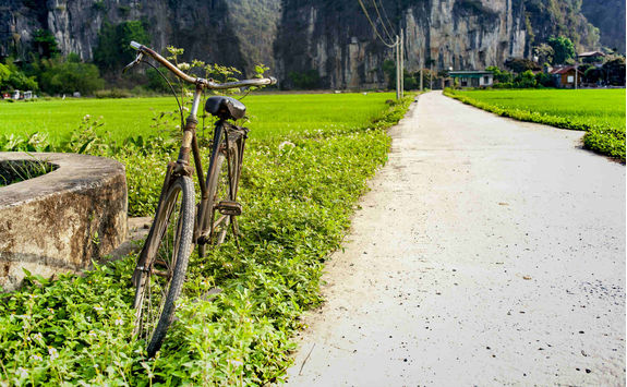 Rustic bicycle with paddy field in the background