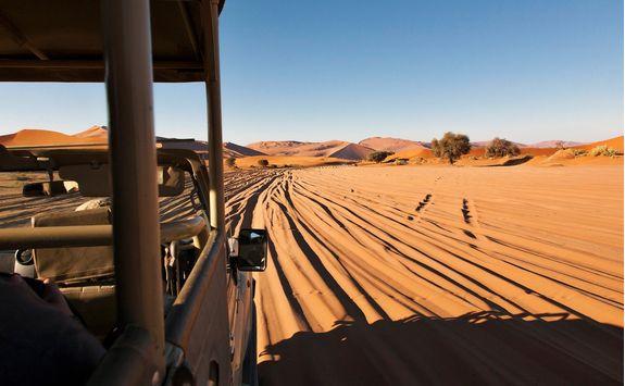 desert view from 4x4