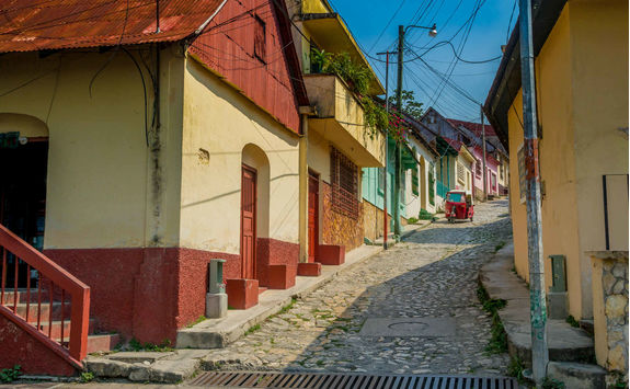 colorful street flores