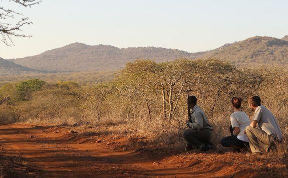 Thanda bush walk