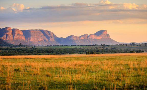 Waterberg mountains under sunrise