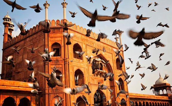 Jamar Masjid, Old Delhi