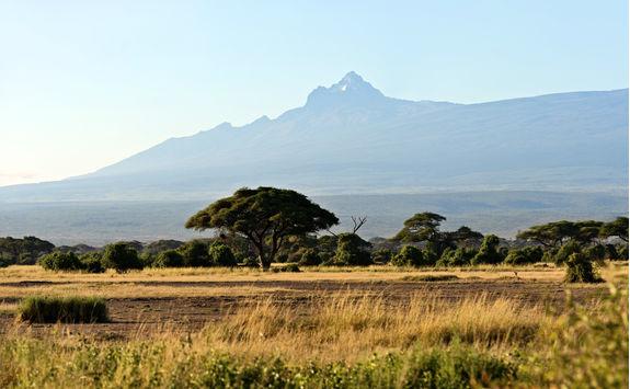 Mount Kenya and savanna