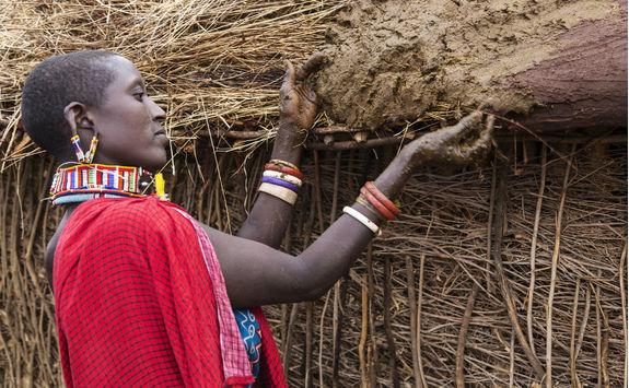 Maasai woman buiding hut putting cows dung on roof