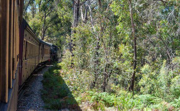 Train through the Blue Mountains